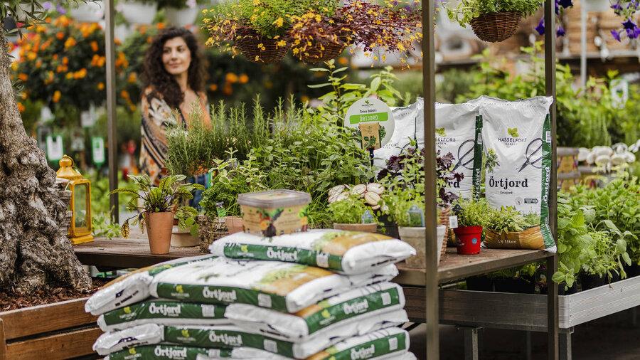 Logistics Manager till Hasselfors Garden