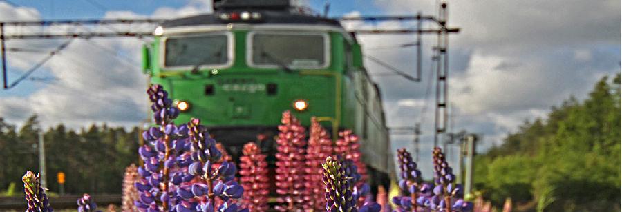 Transportkoordinator till Green Cargo i Borlänge