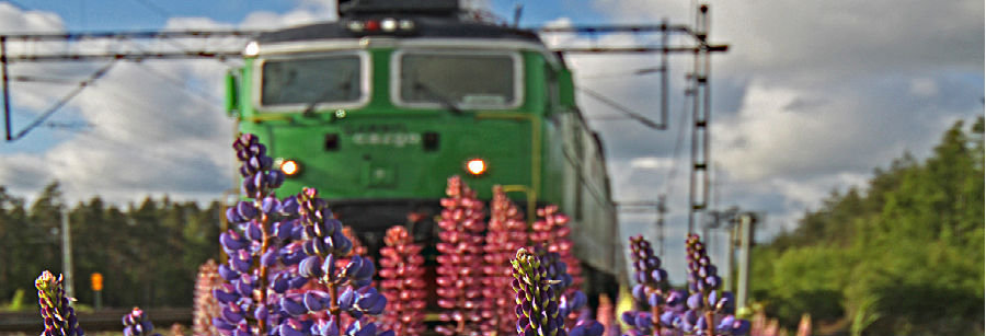 Kundsupport till Green Cargo i Hallsberg