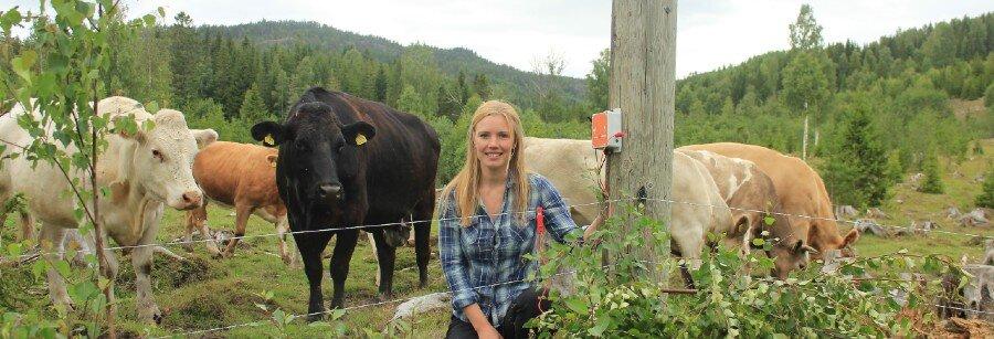 Business Support till Luda.Farm i Göteborg