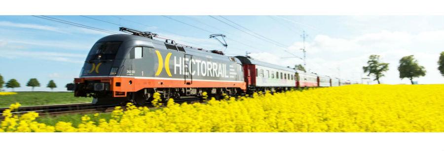 Säkerhetsspecialist på Hector Rail